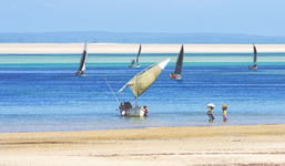 Mozambique Sail Boats